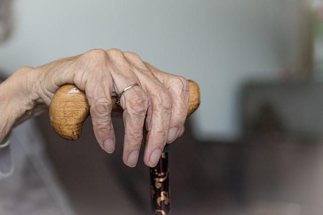 direitos dos idosos pensao alimenticia